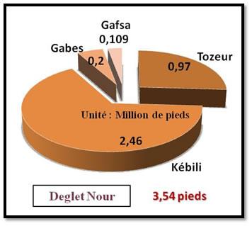 Répartition du nombre pieds de la variété Deglet Nour dans les gouvernorats